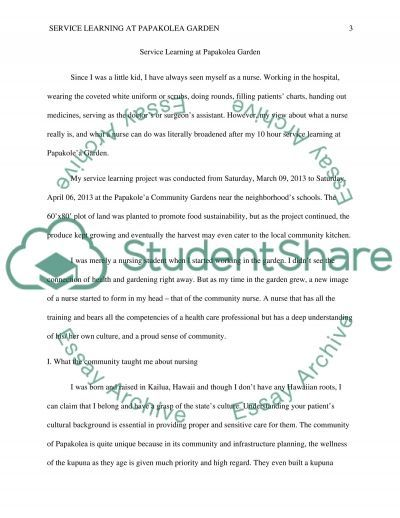 Service Learning Reflection Essay example