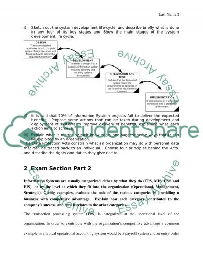 Information System in business essay example