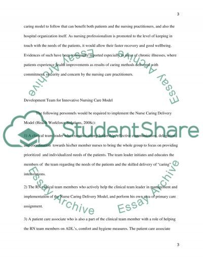 Nursing Care Delivery Models essay example