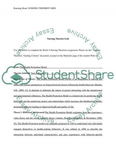 Nursing Theorist Grid essay example