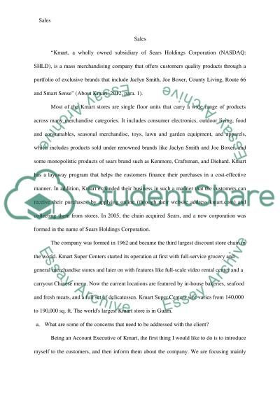 An Account Plan to pitch the Kmarts product or services to targeted clients, and to know how they use the companys service essay example