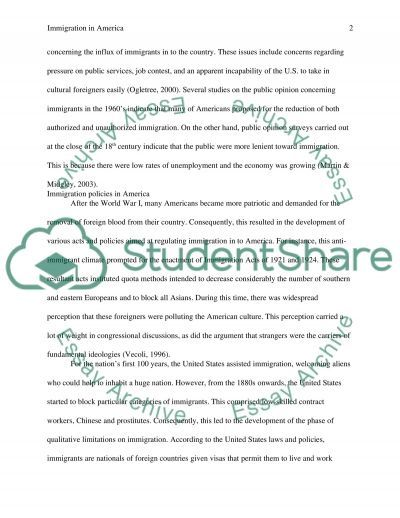 Immigration in America essay example