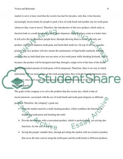Vision and Rationale essay example
