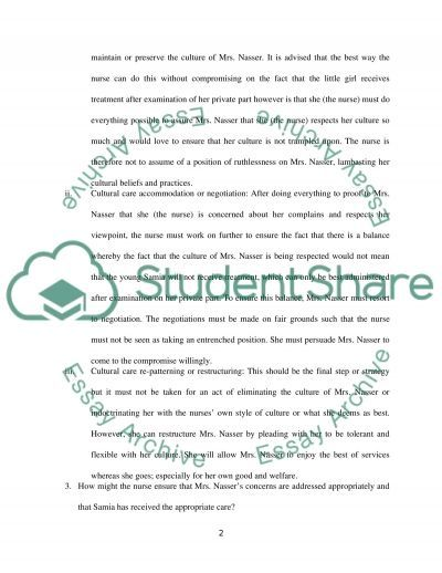 Nursing Culture Groups essay example