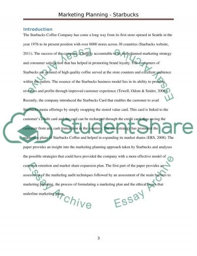 Marketing Planning essay example