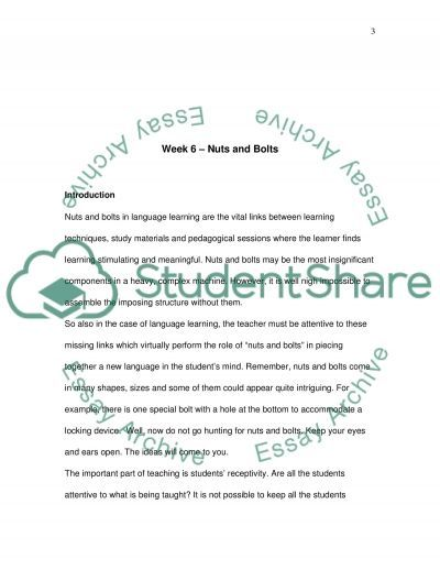 Nuts and Bolts in Language Learning essay example