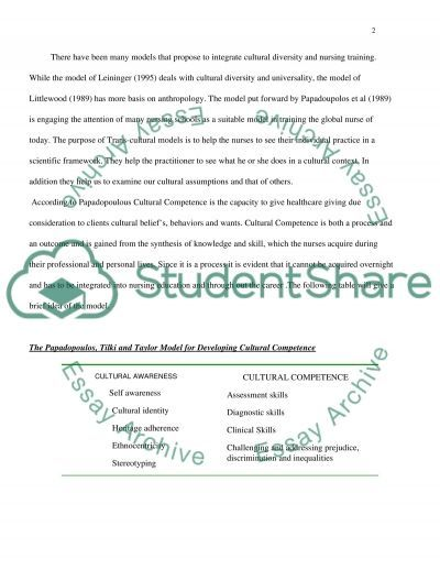 Cultural Diversity and Nursing Practice essay example