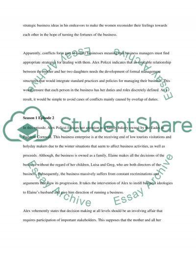 The Fixer essay example