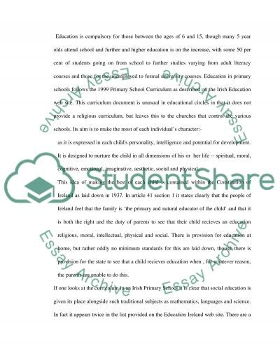 Irish Educational System essay example