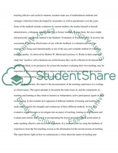 Report on Teaching and Learning essay example