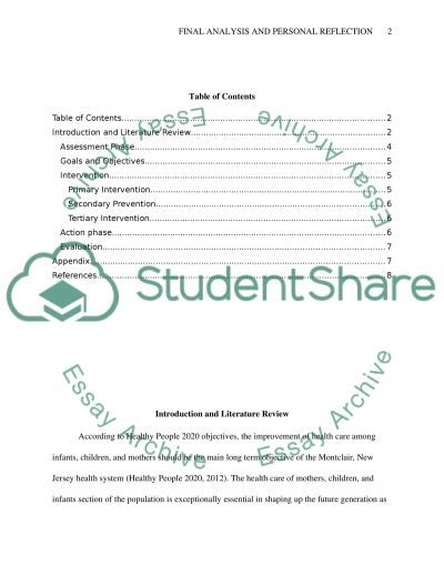 Final Analysis and Personal Reflection essay example