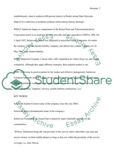 Marketing research - social media audit essay example