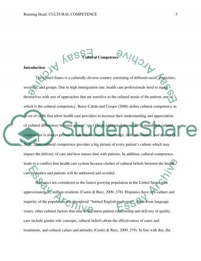 Culteral Competence Paper essay example