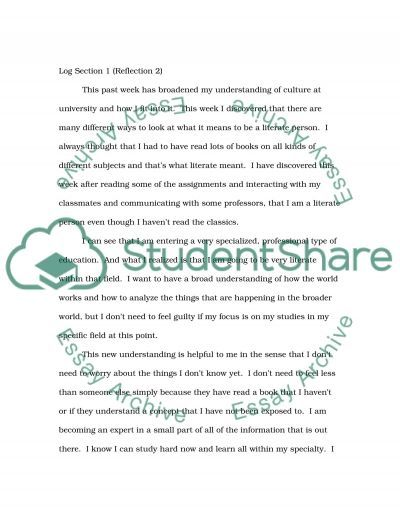 SSK 12 Log B essay example