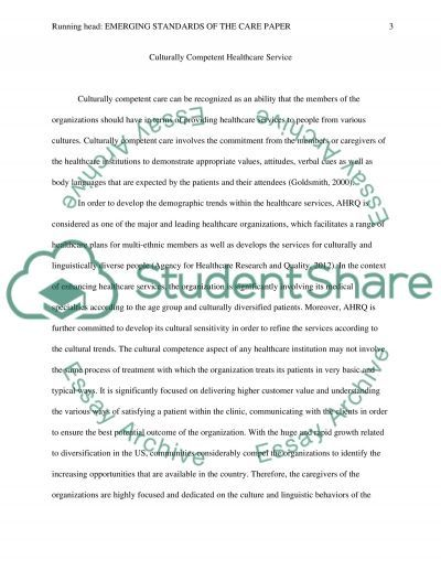 Emerging Standards of Care Paper Essay example
