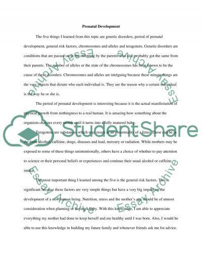 Prenatal development essay example