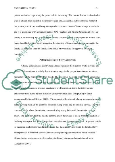 Essay on Software and Copyrights   Custom Essays  Term Papers     SP ZOZ   ukowo