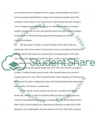 Marketing Analysis essay example