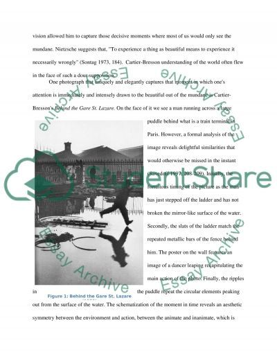 Photographic seeing: what, if anything, could be meant by this concept essay example
