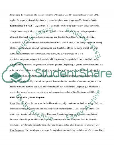 UML essay example