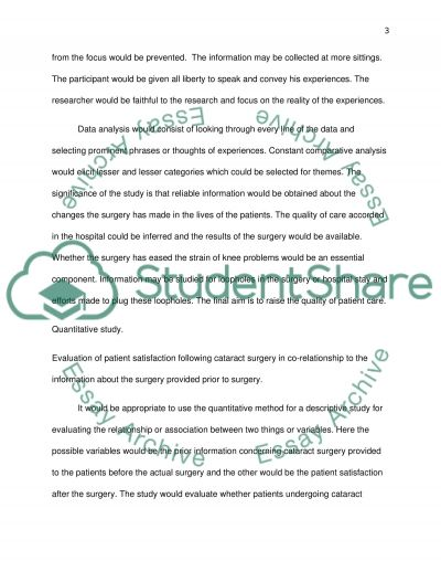 Qualitative Research Processes Research Paper example