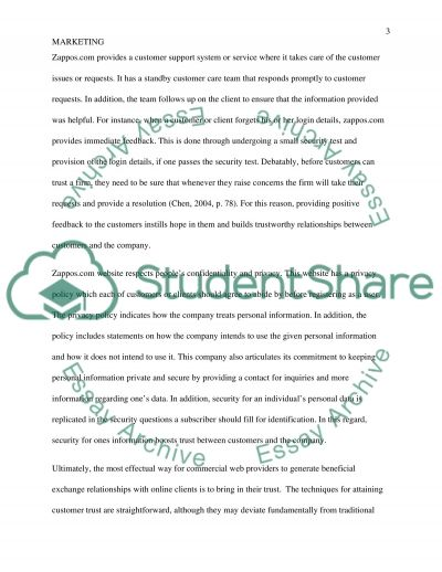 MG3037 Internetmarketing Essay example
