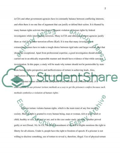 Prisoner Torture essay example