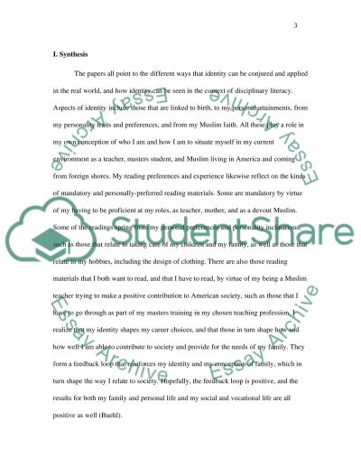 Synthesize and Apply essay example