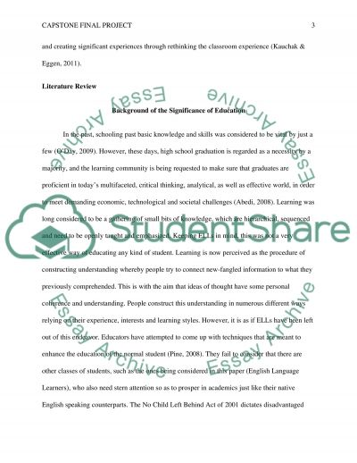 Capstone Final Project essay example