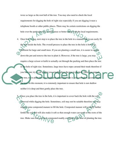 Tree Planting Essay Example | Topics and Well Written Essays