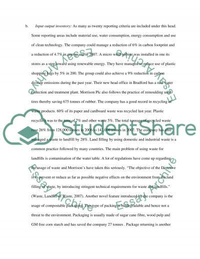 Business & sustainability essay example