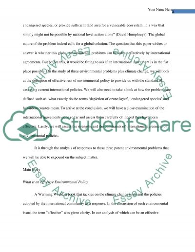 International Environmental Agreements essay example