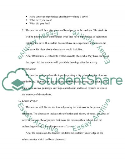 Lesson Plan Assignment essay example