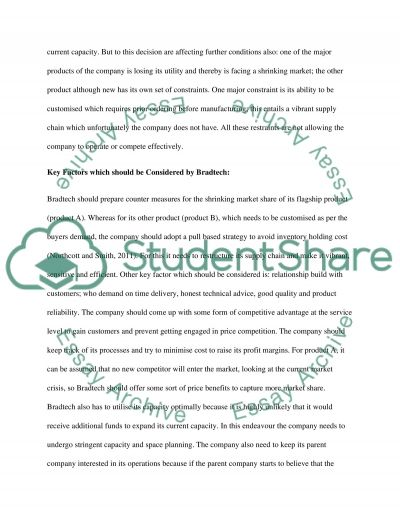 Bradtech Limited Company essay example