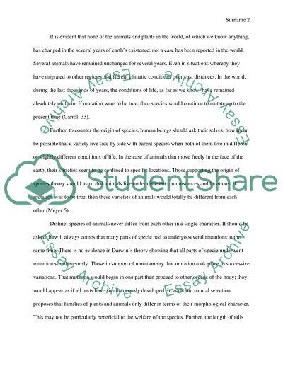 500 word essay looks like