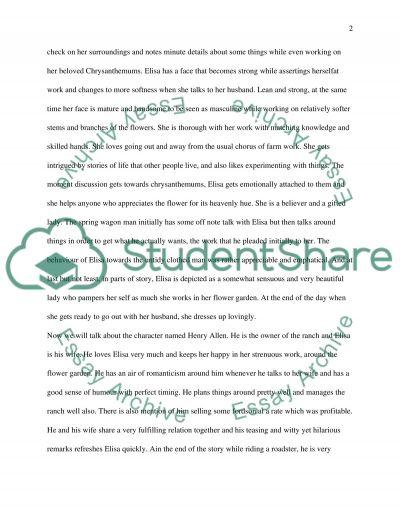 The Chrysanthemums essay example