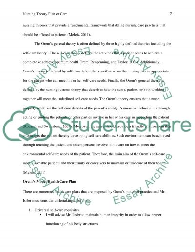 Nursing Theory Plan of Care essay example
