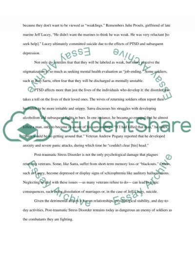 Soldiers Heart essay example