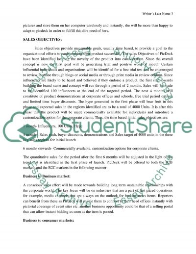 Constructing a Sales Plan Essay example