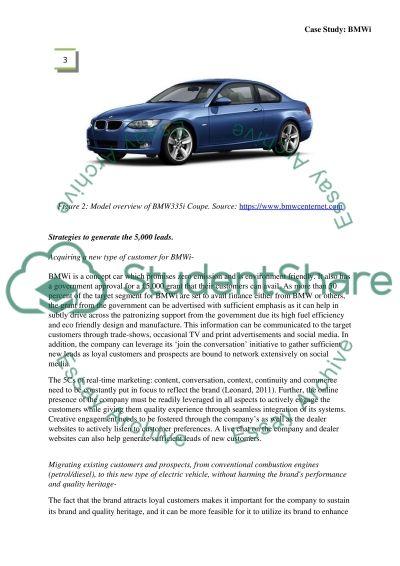 BMWi Case Study essay example