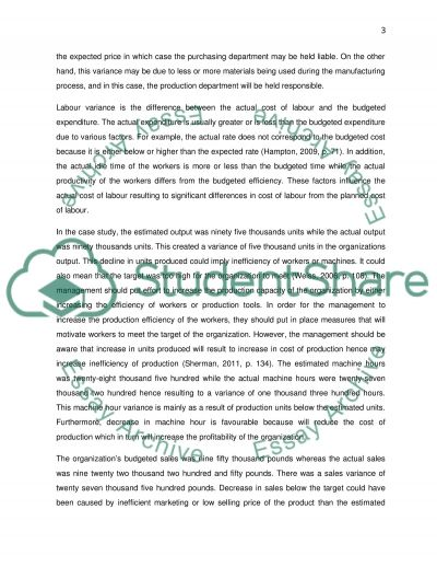 Management and finance essay example