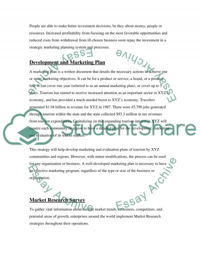 Delovepment of A Marketing Plan Essay example