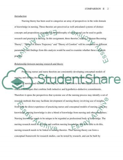 Nursing Theories Essay