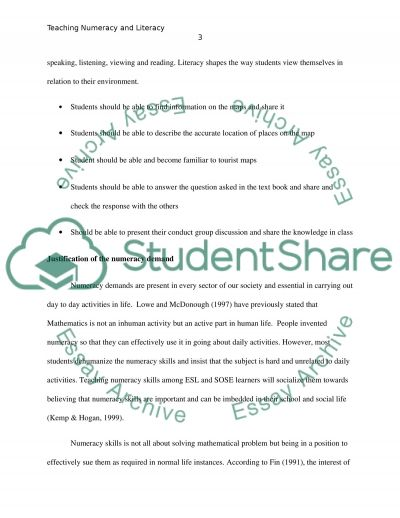 Literacy and numeracy demands in lesson plans essay example