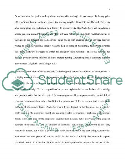 entrepreneurship in the global environment essay
