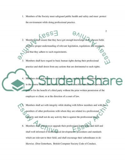 Business Information System essay example