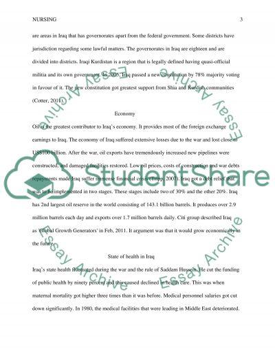 IRAQ essay example