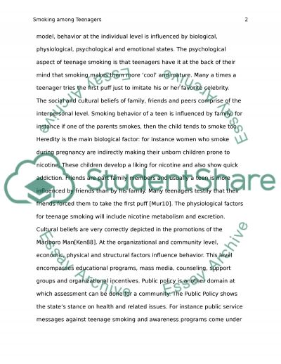 Smoking among Teenagers essay example