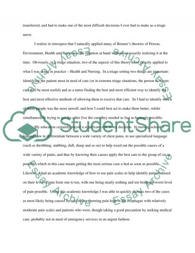 Theories of Nursing Paper essay example