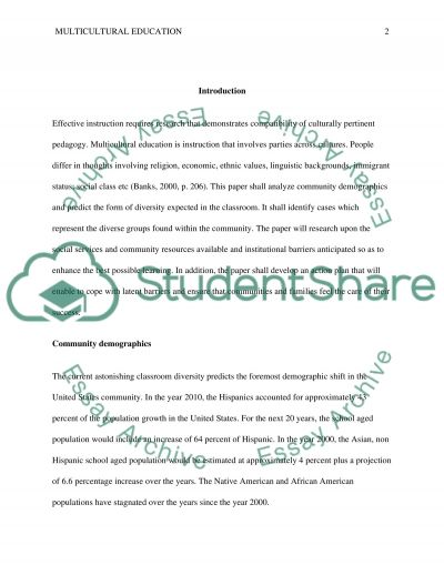 Multicultural Education essay example
